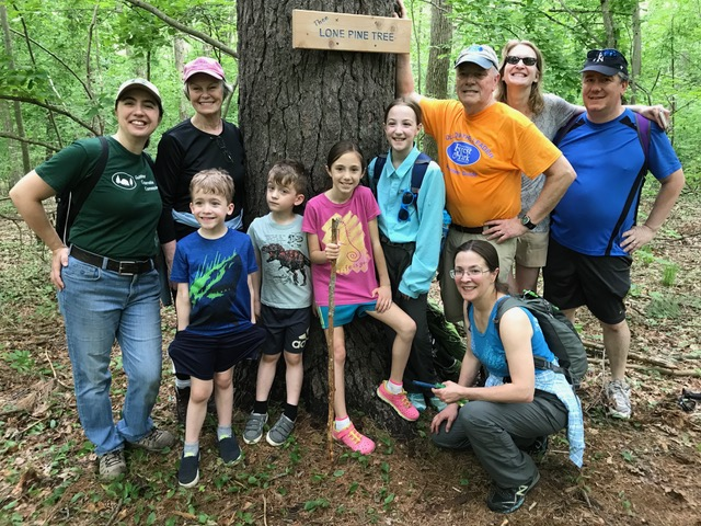 BraemoreTrailsDay2018LonePineTree.jpeg