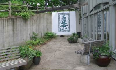 Improved CFPA courtyard with benches, containers, and plantings