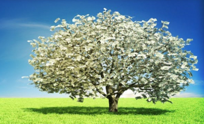 Maybe Money Does Grow on Trees?
