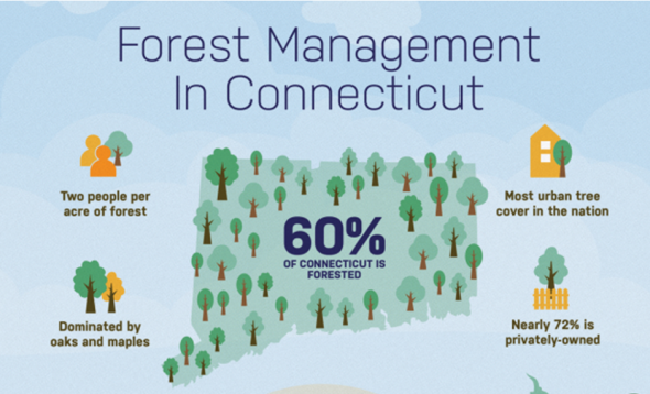 2020 Forest Action Plan