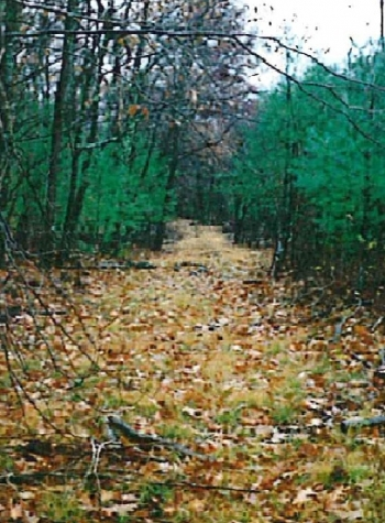 Woods Road within Hull Easement
